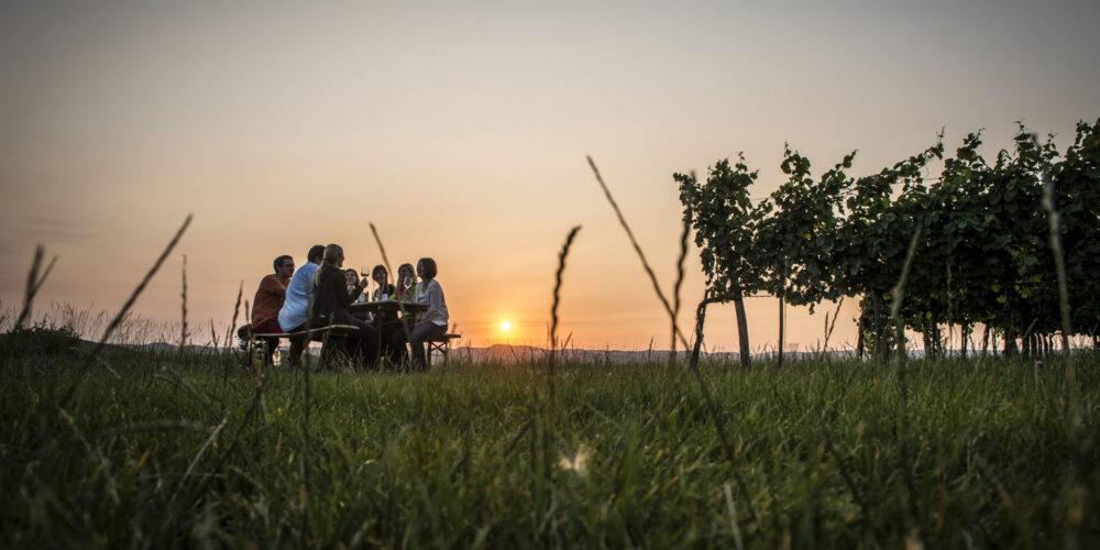 Jause im Weingarten