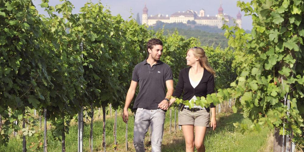 Weingarten-Wanderung mit Blick auf Stift Göttweig